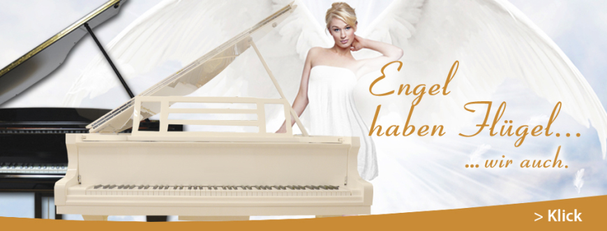 Flügel Imagebild Pianoart
