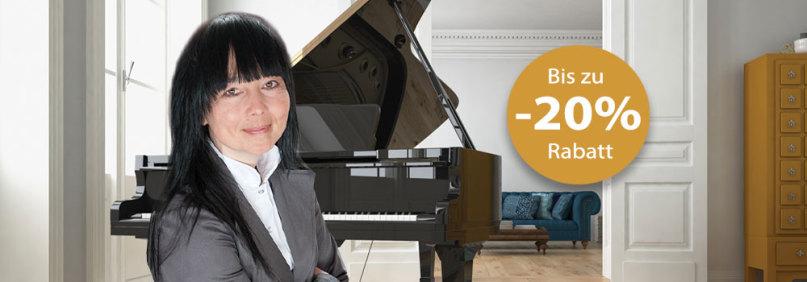 Flügel Aktion im Klavierhaus Pianoart